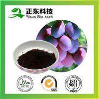 Wholesale Smoked Plum P.E. 10-40%fCitric acid HPLC from china suppliers