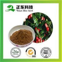 Wholesale Rose Hips Extract 17% Vitamin C from china suppliers