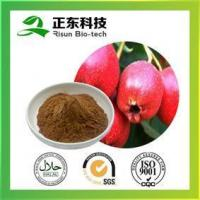 Wholesale Hawthorne Extract strengthening stomach promoting digestion from china suppliers