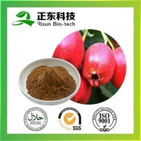 Quality Hawthorne Extract strengthening stomach promoting digestion for sale