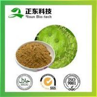 Wholesale Graviola Extract Annona Muricata Linn 10.0% polyphenols from china suppliers