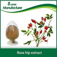 Wholesale Rose hip extract 100% Nature Rose Hip Extract 10% 5% Vitamin C from china suppliers