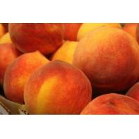 Wholesale juicy peach powder from china suppliers