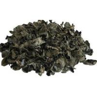 Wholesale Black Fungus Extract from china suppliers