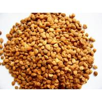 Buy cheap Apricot Kernels from wholesalers