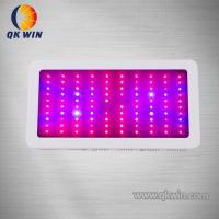 China 100*3w 300w New Led Grow Light Hot Sale on sale