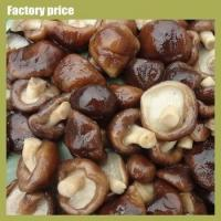China Mushrooms & Truffles mushroom fungus on sale
