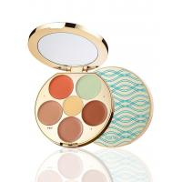 Wholesale limited-edition wipeout color-correcting palette from china suppliers