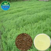 China Pure Natual High Quality Flax Seed /Flax lignans, SDG on sale