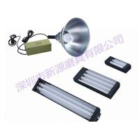Wholesale Ballast for UV lamp from china suppliers