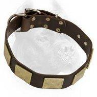 China Outstanding Leather Dog Collar With Massive Handmade Brass Plates on sale
