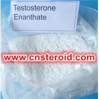 Buy cheap Testosterone enanthate cutting cycle bodybuilding Supplements Sources from wholesalers
