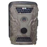 Wholesale Trail Camera Model NO:BGH0041 from china suppliers
