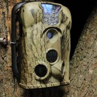 Wholesale Trail Camera Model NO:BGH0048 from china suppliers
