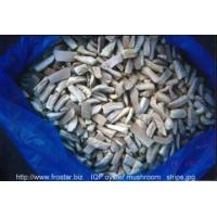 Wholesale IQF Frozen Mushrooms IQF oyster mushroom from china suppliers