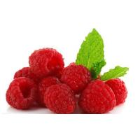 Fresh foods IQF Red Raspberrys