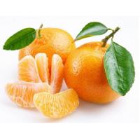 Wholesale Fresh foods IQF Mandarine from china suppliers