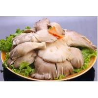 Wholesale Fresh foods IQF Oyster Mushroom from china suppliers