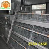 Wholesale 3 tiers x5 cells 120 chicken layer cages A type farming equipment for sale from china suppliers