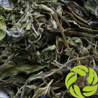 China Wholesale fit tea Chinese herb for detox and weight loss dried peppermint leaf herbal tea on sale