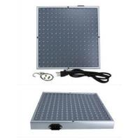 China LED Grow Light Top sale guaranteed quality led 12v light for plan on sale