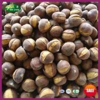 China 2014 Top Sale Organic Frozen Smiling Chinese Chestnuts Roasting on sale