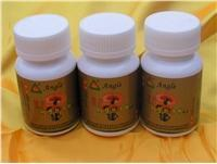 Wholesale Lingzhi Shell-broken Spore Powder Capsule from china suppliers
