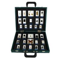 Wholesale TS0008 30-Insect Specimen Kits from china suppliers