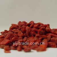 Wholesale Ningxia Goji from china suppliers