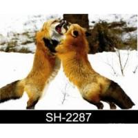 Wholesale 3D lenticular products 3d animal pictures from china suppliers