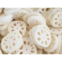 Wholesale IQF Lotus Root Slices from china suppliers