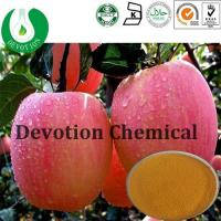 Wholesale Apple Extract - Apple Polyphenols from china suppliers