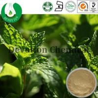 Wholesale Mint Leaf Extract- DL-Menthol from china suppliers