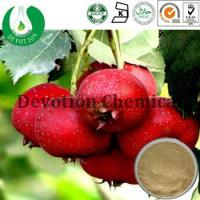 Wholesale Hawthorn Extract- Flavones from china suppliers