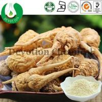 Wholesale Maca Extract from china suppliers