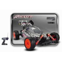 China RC Buggy-Rogster1/10 Scale on sale