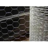 Stainless Steel Chicken Wire