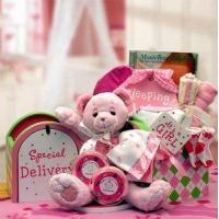 Wholesale Gift Basket Drop Shipping 890512-Pink A Special Delivery New Baby Gift set - Pink from china suppliers