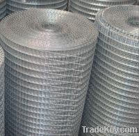 Wholesale Welded Wire Mesh DBL-A from china suppliers