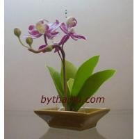 Wholesale CLAY FLOWERS Cattleya-S from china suppliers