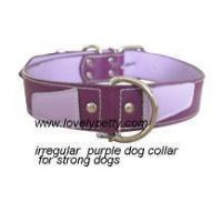 China Leather dog collar & lead on sale