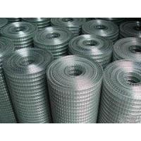 Wholesale Galvanzied Welded Wire Mes from china suppliers