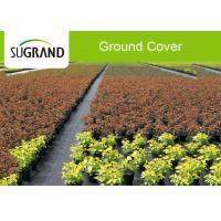 Wholesale 100GSM Plastic Black Landscape Weed Mat Ground Cover Fabric For Garden from china suppliers