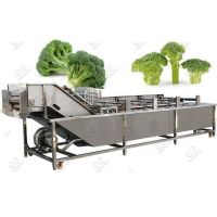 Wholesale Automatic Broccoli Florets Washing Machine Supplier from china suppliers