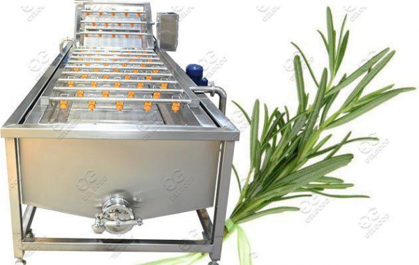 China Industrial Leaves Washing Machine|Leafy Vegetable Washer