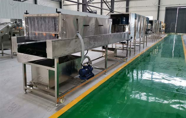 China Industrial Use Citrus Fruit Washing Waxing Machine