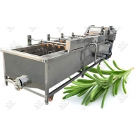 Wholesale Bubble Type Rosemary Leaves Washing Machine from china suppliers