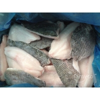 Wholesale Frozen Tilapia Fillets skin-on from china suppliers