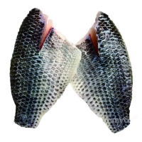 Wholesale Frozen Tilapia Fillets skinon from china suppliers