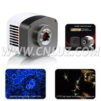 Wholesale MAC.033008 Digital Camera from china suppliers
